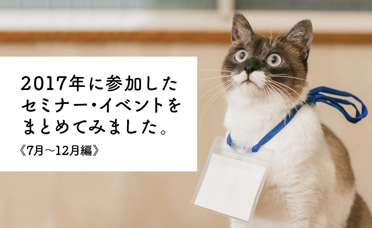 イメージ写真:真剣な眼差しで話を聞いている猫。